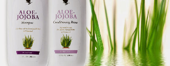 Where how can I buy get order Aloe Jojoba Hair Shampoo in Kenya?